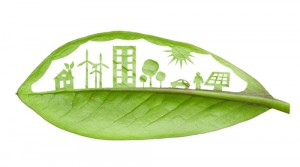 sustainable features in new homes