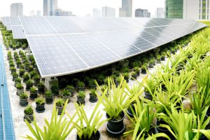 green building trends