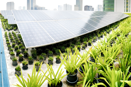The Latest in International Green Building Trends